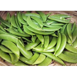 Sugar Snap Peas $3 Bag ($16.99/kg)