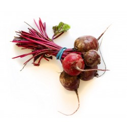 Beetroot, 1kg bag (no leaves)
