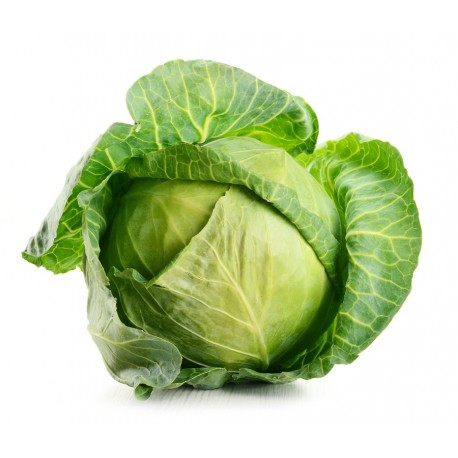 Cabbages - White