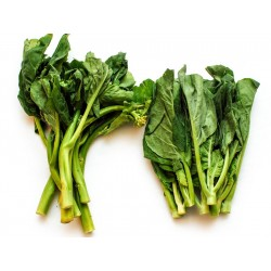 Chinese Brocoli $3.50 per bunch