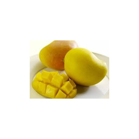 Mangoes Kensington Pride Large (avge 500grams)