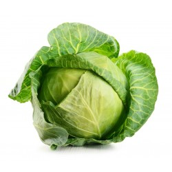 Cabbage, white (half)