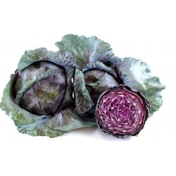 Cabbage, red (half)