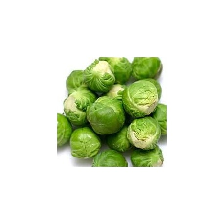 Sprouts Brussels 300grs ($9/kg)