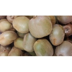 Kiwifruits - Large 500grams ($4.99/kg)