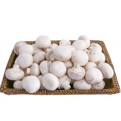Mushrooms, White Buttons 340g ($13/kg)