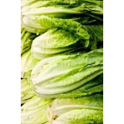 Lettuce, Baby Cos Hearts 2 for $3