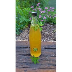 Kombucha - 1 Lt Bottle Mint
