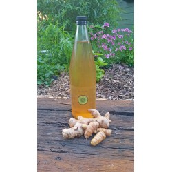 Kombucha - 1 Lt Bottle Lemon & Ginger